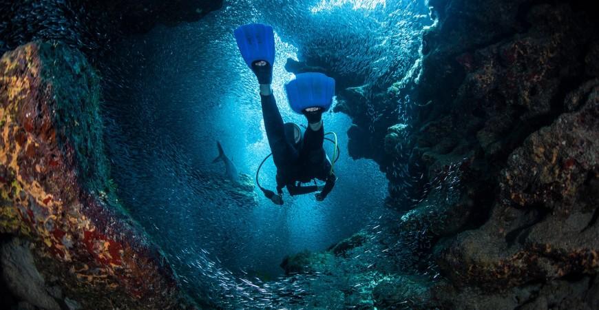 Cos'ha di così speciale il mondo subacqueo?