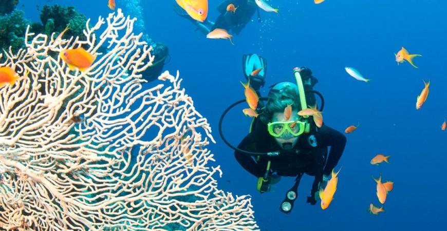 13 consigli per praticare immersioni subacquee in sicurezza